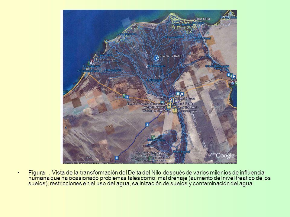 Figura. Vista de la transformación del Delta del Nilo después de varios milenios de influencia humana que ha ocasionado problemas tales como: mal dren