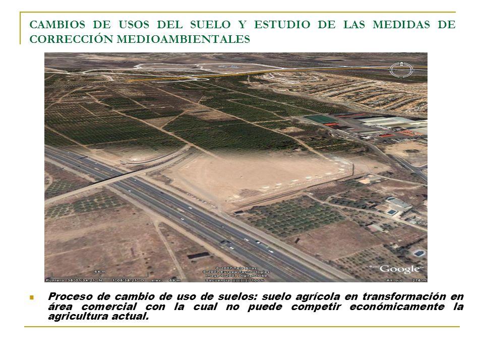 CAMBIOS DE USOS DEL SUELO Y ESTUDIO DE LAS MEDIDAS DE CORRECCIÓN MEDIOAMBIENTALES Proceso de cambio de uso de suelos: suelo agrícola en transformación en área comercial con la cual no puede competir económicamente la agricultura actual.