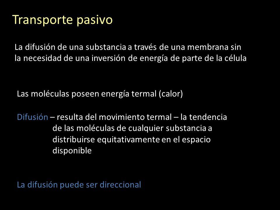 Proteínas transportadoras (carrier proteins)