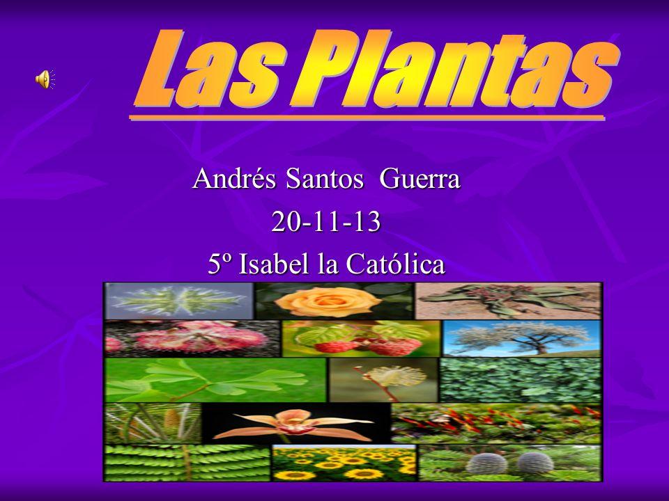 Andrés Santos Guerra 20-11-13 5º Isabel la Católica