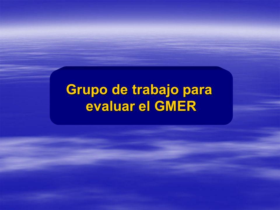Grupo de trabajo para evaluar el GMER