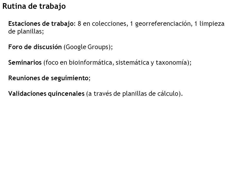 Estaciones de trabajo: 8 en colecciones, 1 georreferenciación, 1 limpieza de planillas; Foro de discusión (Google Groups); Seminarios (foco en bioinformática, sistemática y taxonomía); Reuniones de seguimiento; Validaciones quincenales (a través de planillas de cálculo).