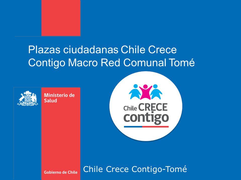 Chile Crece Contigo-Tomé Plazas ciudadanas Chile Crece Contigo Macro Red Comunal Tomé
