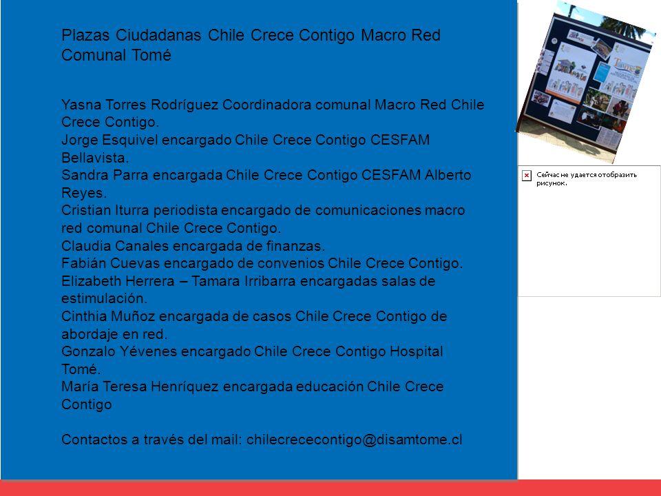 Yasna Torres Rodríguez Coordinadora comunal Macro Red Chile Crece Contigo.