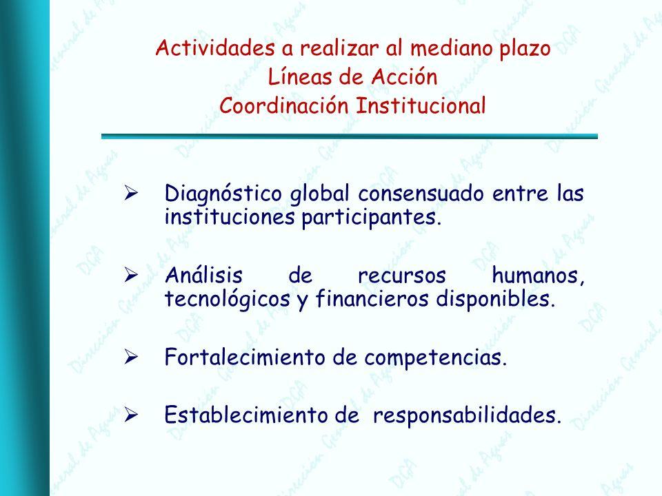 Actividades a realizar al mediano plazo Líneas de Acción Coordinación Institucional Diagnóstico global consensuado entre las instituciones participantes.