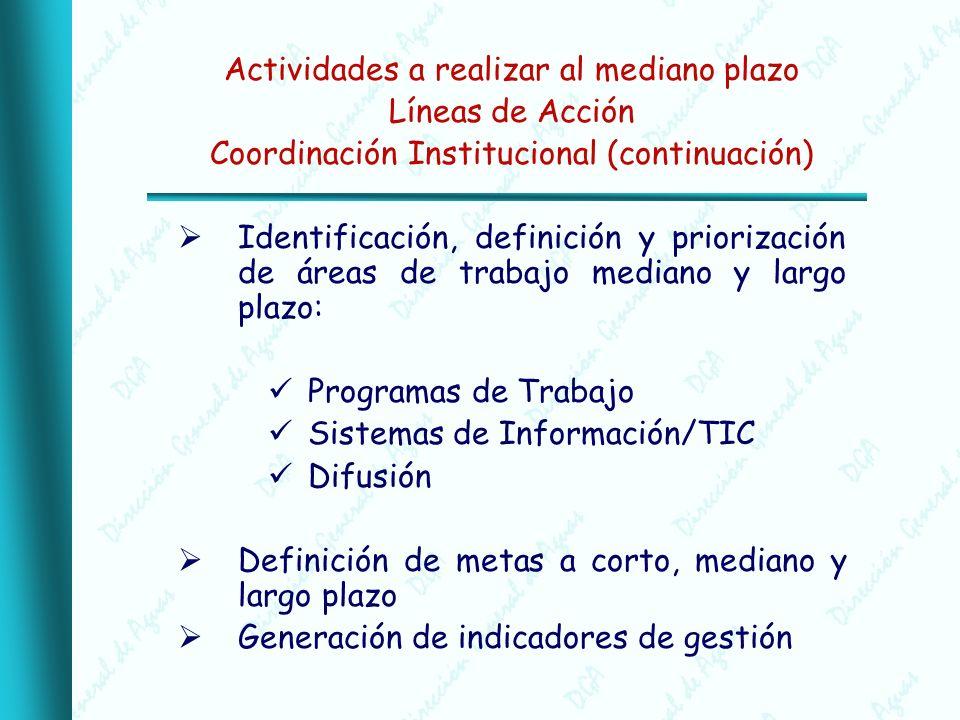 Actividades a realizar al mediano plazo Líneas de Acción Coordinación Institucional (continuación) Identificación, definición y priorización de áreas de trabajo mediano y largo plazo: Programas de Trabajo Sistemas de Información/TIC Difusión Definición de metas a corto, mediano y largo plazo Generación de indicadores de gestión