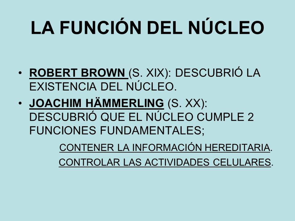 LA FUNCIÓN DEL NÚCLEO ROBERT BROWN (S.XIX): DESCUBRIÓ LA EXISTENCIA DEL NÚCLEO.