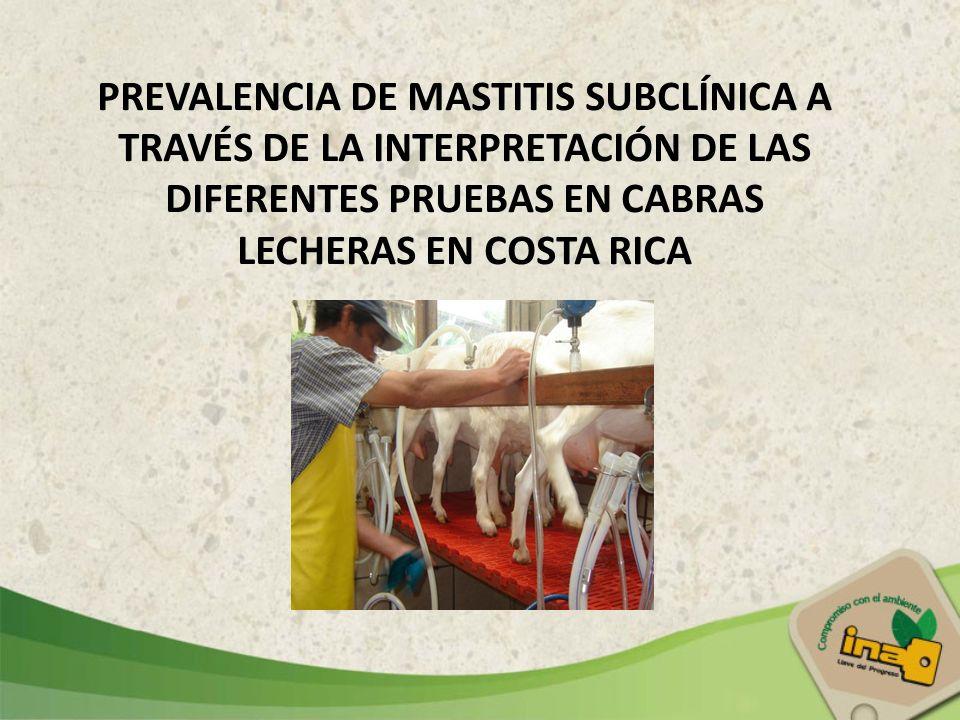 PREVALENCIA DE MASTITIS SUBCLÍNICA A TRAVÉS DE LA INTERPRETACIÓN DE LAS DIFERENTES PRUEBAS EN CABRAS LECHERAS EN COSTA RICA
