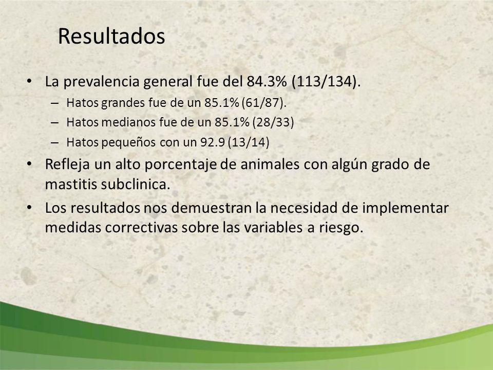 Resultados La prevalencia general fue del 84.3% (113/134). – Hatos grandes fue de un 85.1% (61/87). – Hatos medianos fue de un 85.1% (28/33) – Hatos p