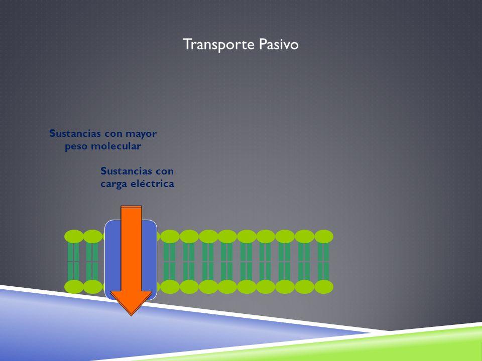 Sustancias con carga eléctrica Sustancias con mayor peso molecular