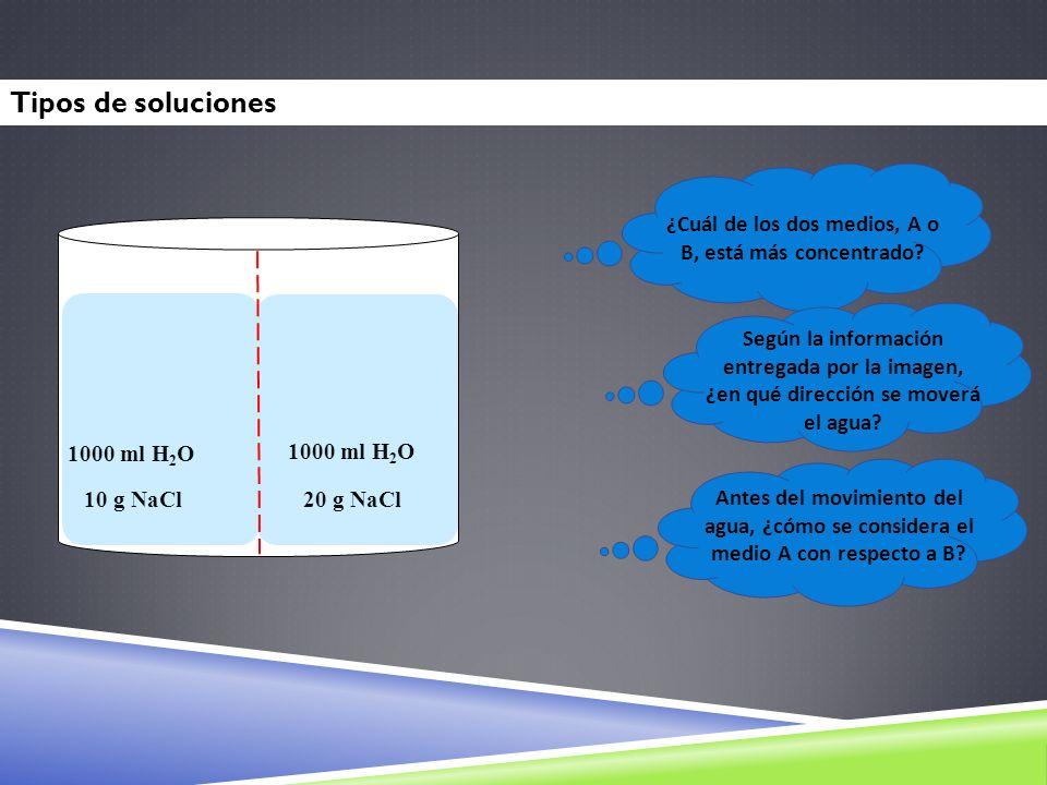 AB 1000 ml H 2 O 10 g NaCl 20 g NaCl ¿Cuál de los dos medios, A o B, está más concentrado? Según la información entregada por la imagen, ¿en qué direc