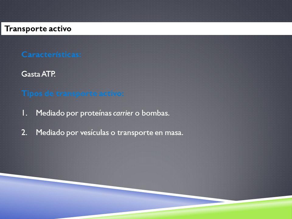 Transporte activo Características: Gasta ATP. Tipos de transporte activo: 1.Mediado por proteínas carrier o bombas. 2.Mediado por vesículas o transpor