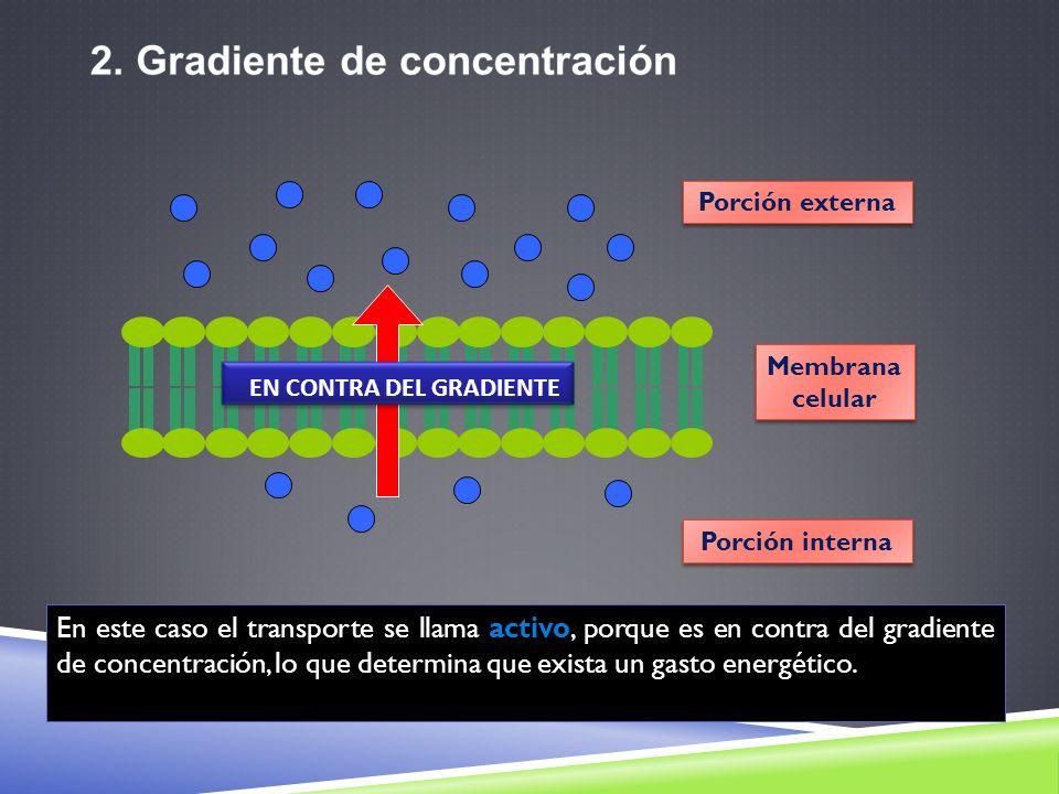 Membrana celular Membrana celular Porción externa Porción interna EN CONTRA DEL GRADIENTE En este caso el transporte se llama activo, porque es en con