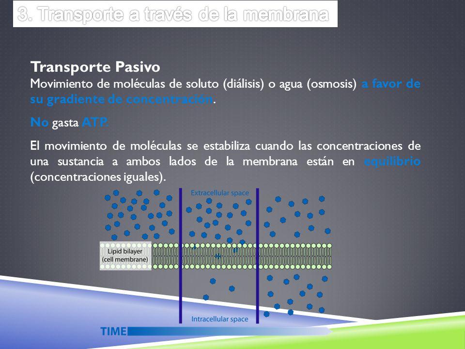 Transporte Pasivo Movimiento de moléculas de soluto (diálisis) o agua (osmosis) a favor de su gradiente de concentración. No gasta ATP. El movimiento
