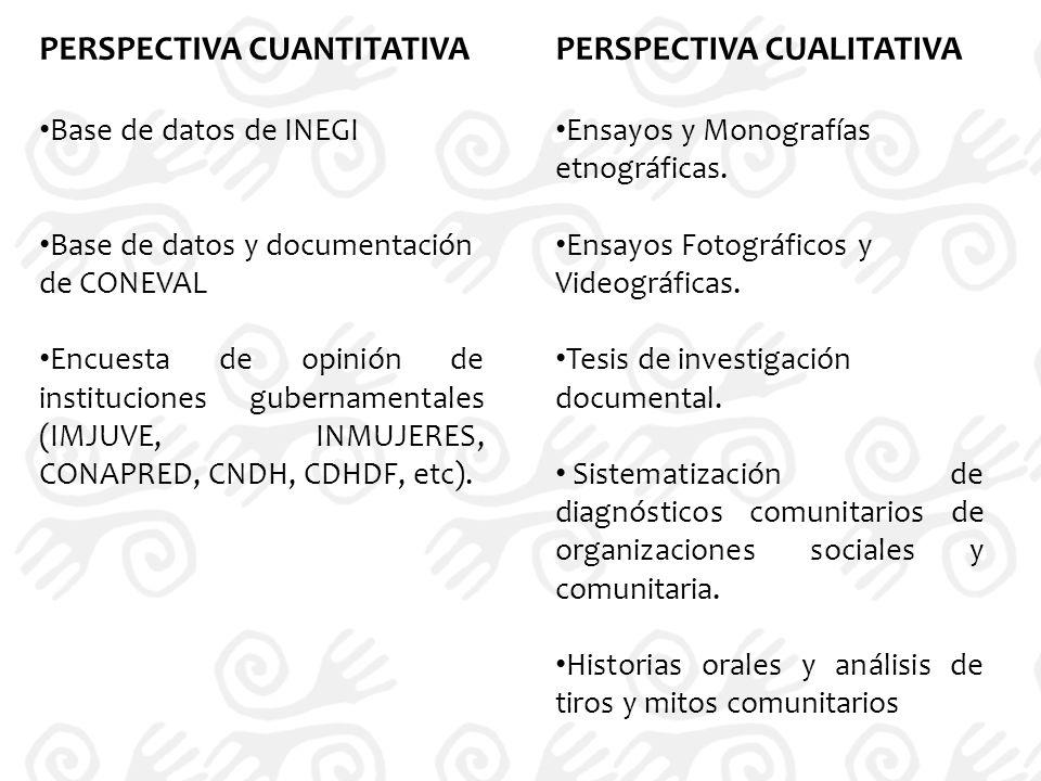 PERSPECTIVA CUANTITATIVA Base de datos de INEGI Base de datos y documentación de CONEVAL Encuesta de opinión de instituciones gubernamentales (IMJUVE, INMUJERES, CONAPRED, CNDH, CDHDF, etc).