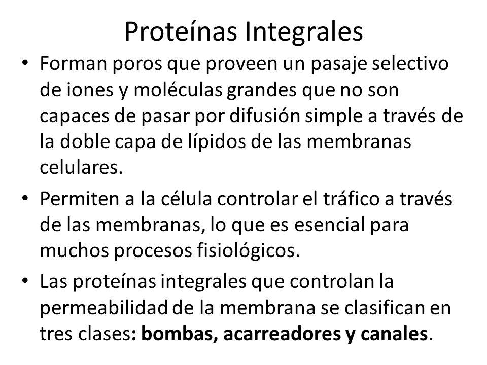 Proteínas Integrales 1.