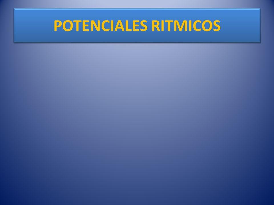 POTENCIALES RITMICOS