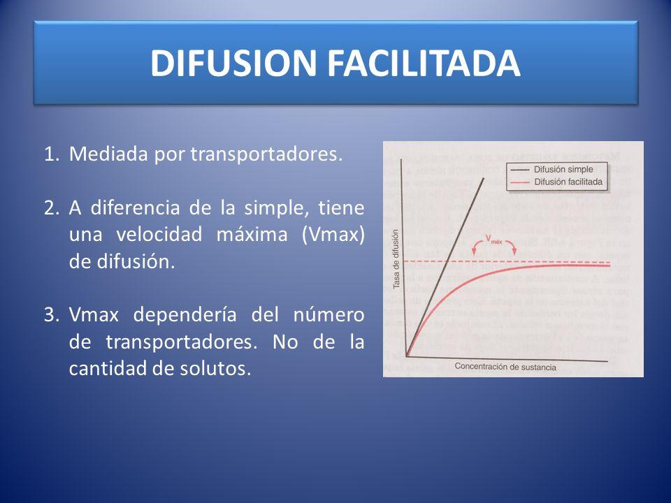 DIFUSION FACILITADA 1.Mediada por transportadores. 2.A diferencia de la simple, tiene una velocidad máxima (Vmax) de difusión. 3.Vmax dependería del n
