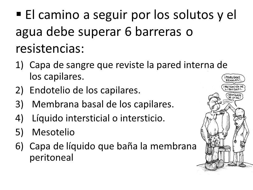 El camino a seguir por los solutos y el agua debe superar 6 barreras o resistencias: 1)Capa de sangre que reviste la pared interna de los capilares. 2