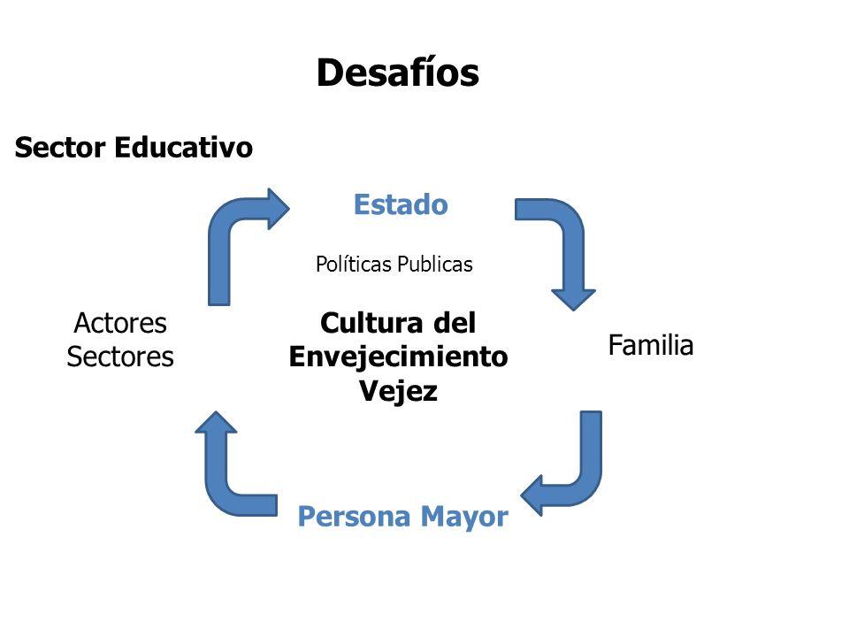 Sector Educativo Cultura del Envejecimiento Vejez Actores Sectores Estado Familia Persona Mayor Políticas Publicas Desafíos