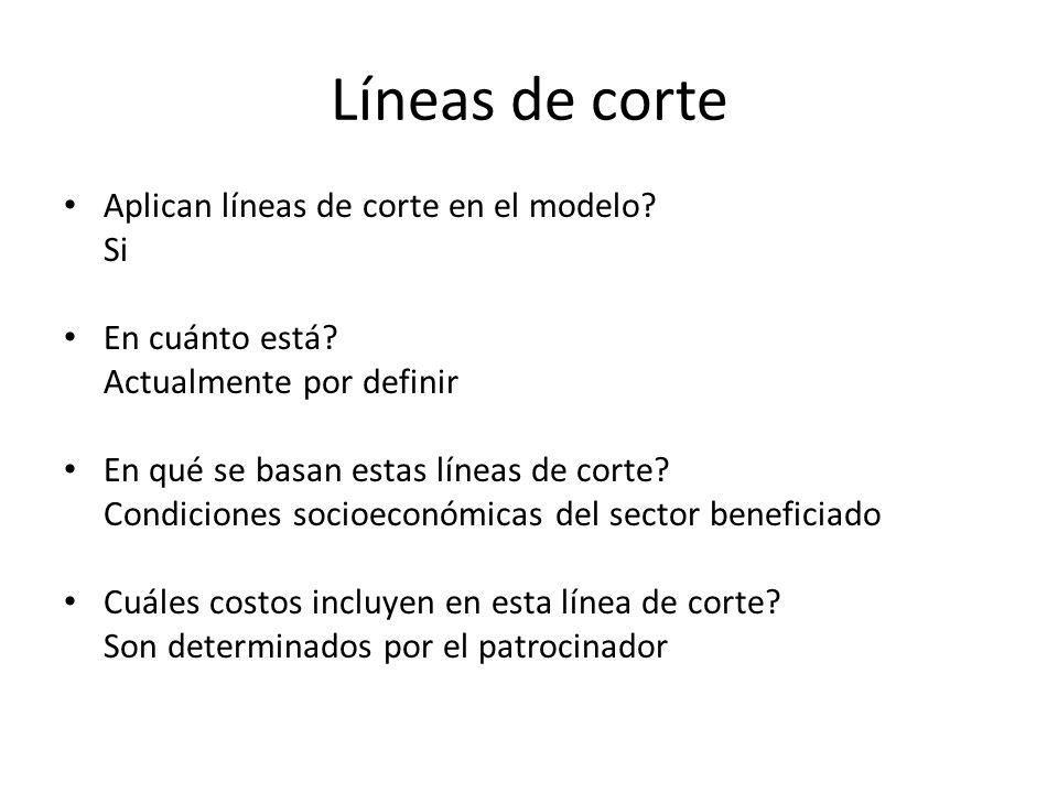 Líneas de corte Aplican líneas de corte en el modelo? Si En cuánto está? Actualmente por definir En qué se basan estas líneas de corte? Condiciones so