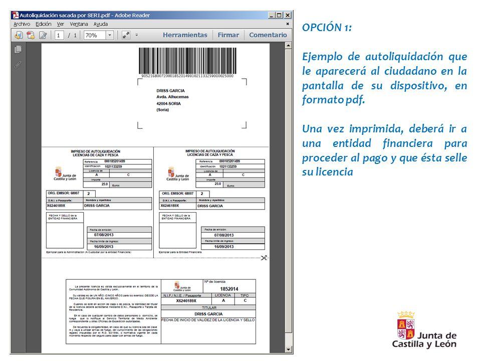 OPCIÓN 1: Ejemplo de autoliquidación que le aparecerá al ciudadano en la pantalla de su dispositivo, en formato pdf.