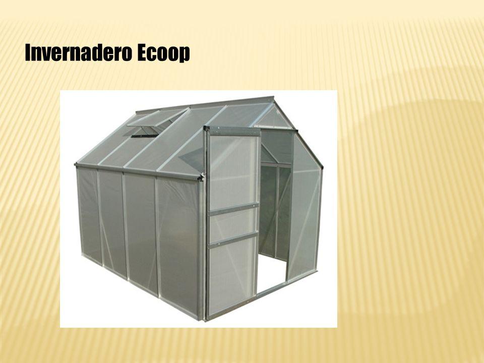 Invernadero Ecoop