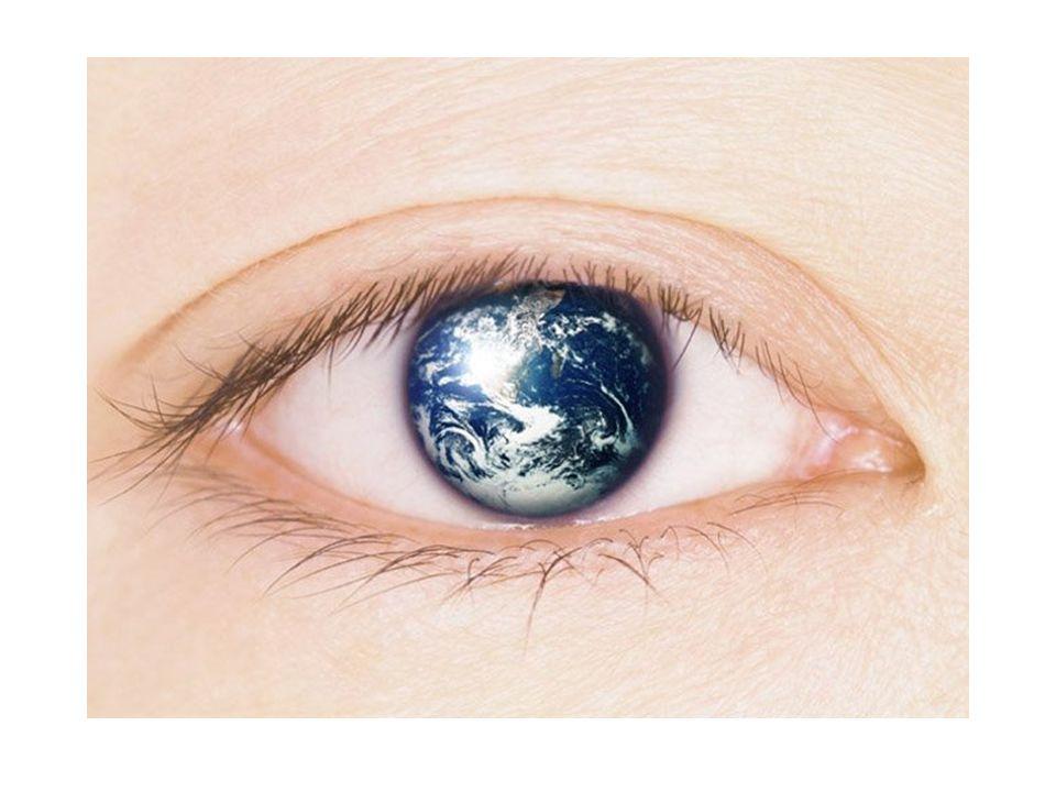 Introducción.La imagen hace parte integral del desarrollo social y cultural del ser humano.
