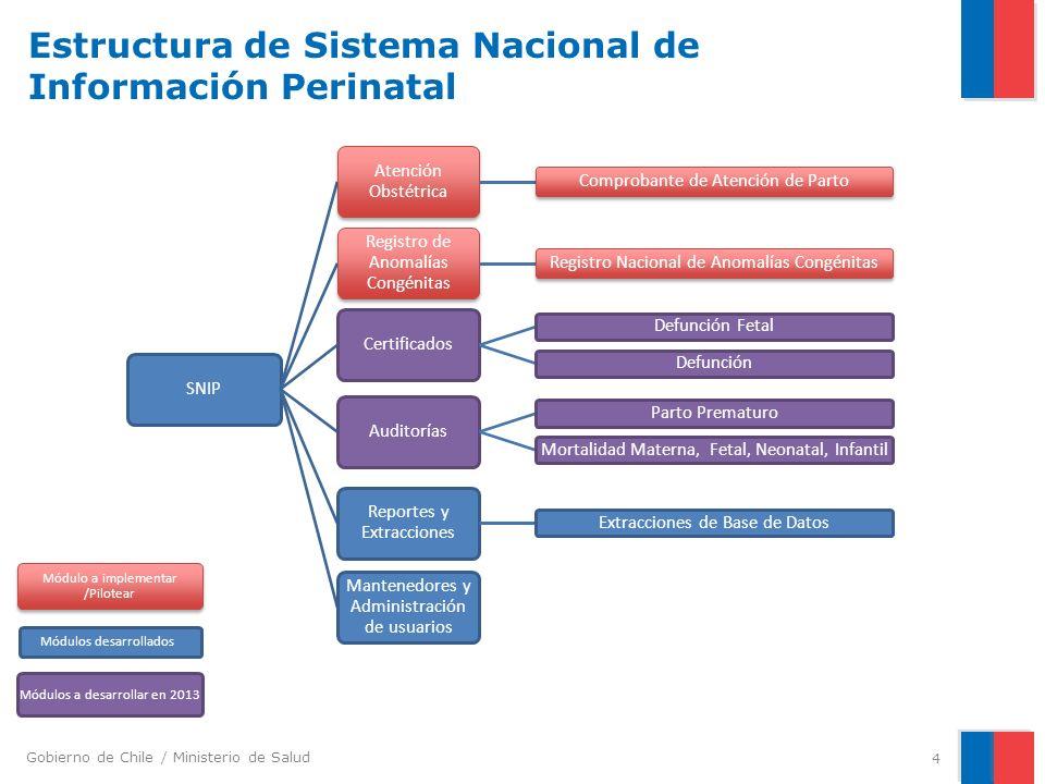 Gobierno de Chile / Ministerio de Salud Estructura de Sistema Nacional de Información Perinatal SNIP Atención Obstétrica Comprobante de Atención de Pa