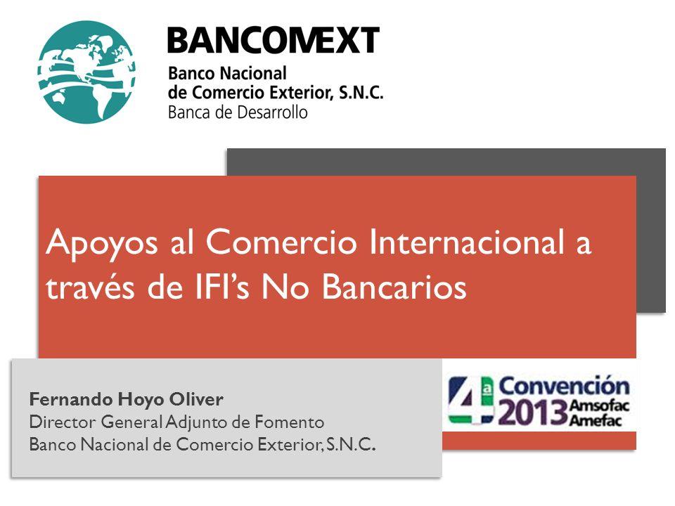 Fernando Hoyo Oliver Director General Adjunto de Fomento Banco Nacional de Comercio Exterior, S.N.C. Apoyos al Comercio Internacional a través de IFIs