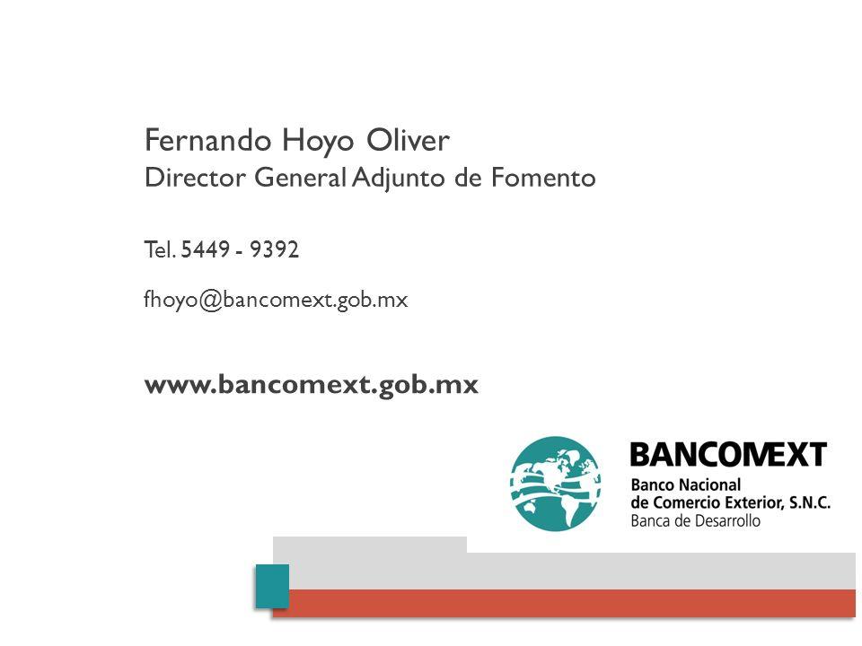 Fernando Hoyo Oliver Director General Adjunto de Fomento Tel. 5449 - 9392 fhoyo@bancomext.gob.mx www.bancomext.gob.mx