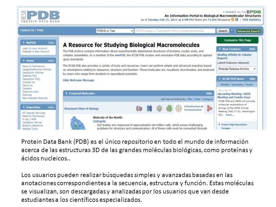 Protein Data Bank (PDB) es el único repositorio en todo el mundo de información acerca de las estructuras 3D de las grandes moléculas biológicas, como proteínas y ácidos nucleicos..