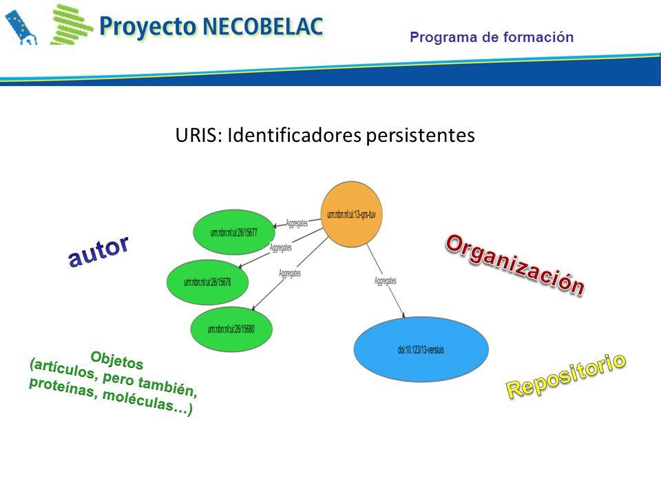 Programa de formación URIS: Identificadores persistentes