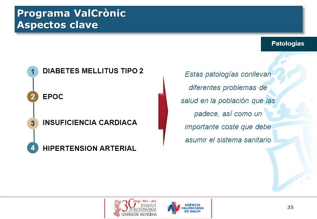 35 Patologías DIABETES MELLITUS TIPO 2 EPOC INSUFICIENCIA CARDIACA HIPERTENSION ARTERIAL Estas patologías conllevan diferentes problemas de salud en l