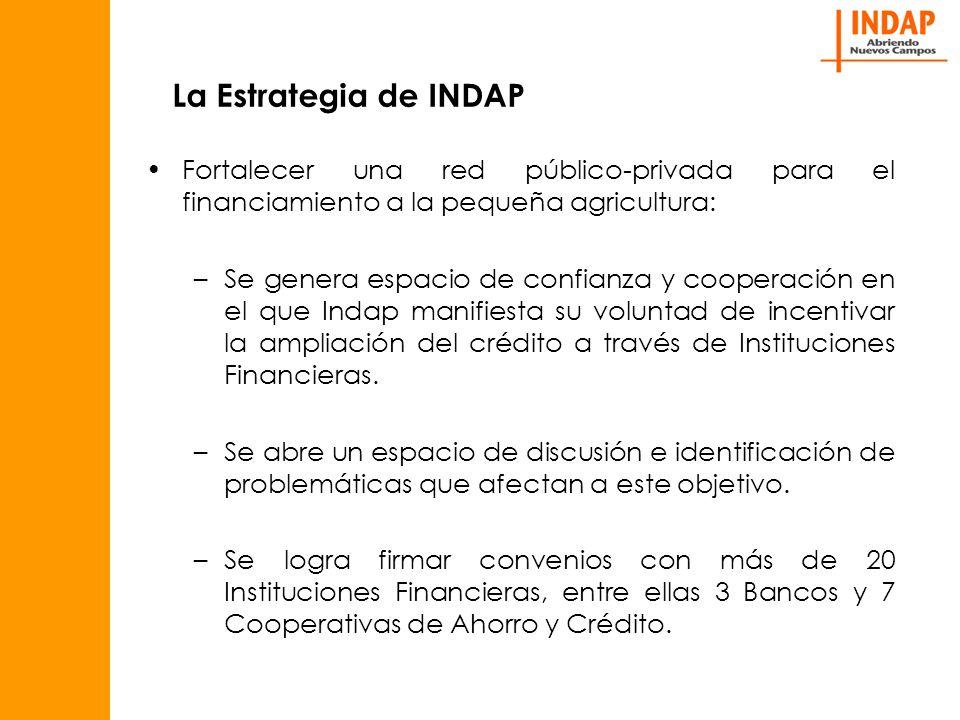 La Estrategia de INDAP Fortalecer una red público-privada para el financiamiento a la pequeña agricultura: –Se genera espacio de confianza y cooperación en el que Indap manifiesta su voluntad de incentivar la ampliación del crédito a través de Instituciones Financieras.