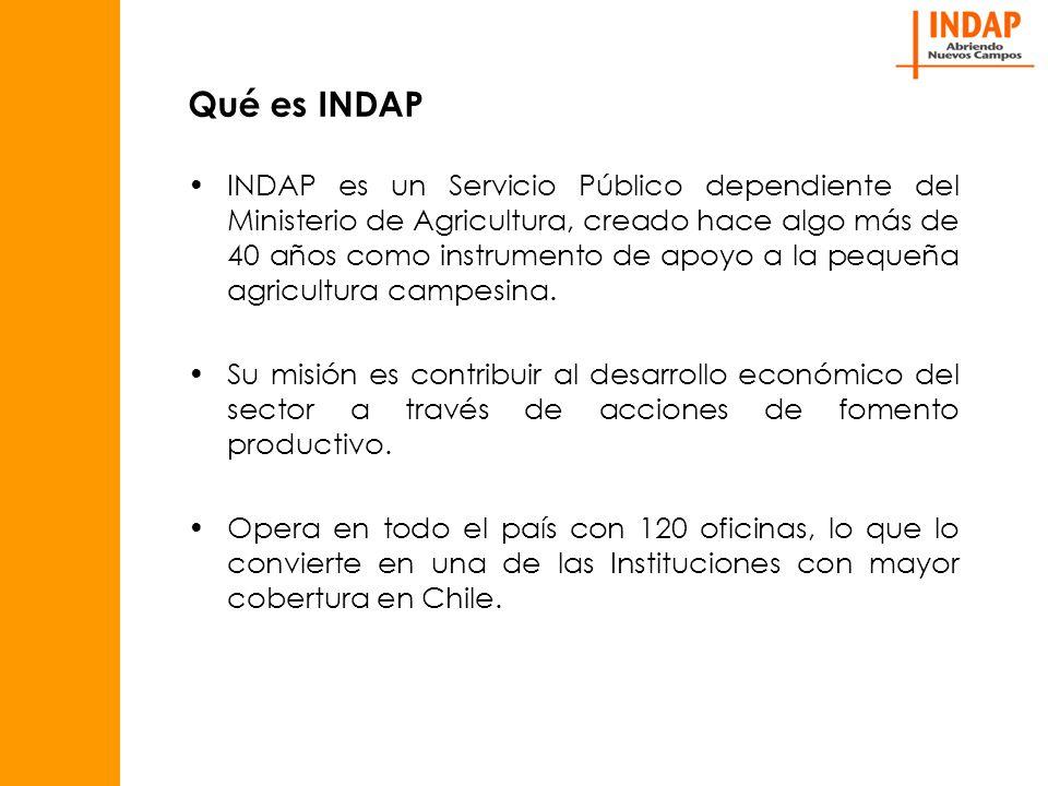 Qué es INDAP INDAP es un Servicio Público dependiente del Ministerio de Agricultura, creado hace algo más de 40 años como instrumento de apoyo a la pequeña agricultura campesina.