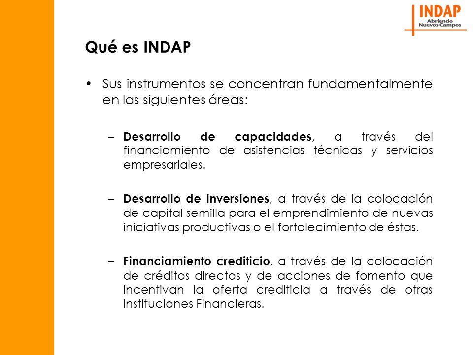 Qué es INDAP Sus instrumentos se concentran fundamentalmente en las siguientes áreas: – Desarrollo de capacidades, a través del financiamiento de asistencias técnicas y servicios empresariales.