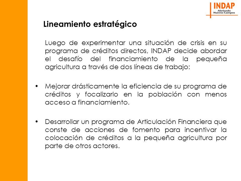Lineamiento estratégico Luego de experimentar una situación de crisis en su programa de créditos directos, INDAP decide abordar el desafío del financiamiento de la pequeña agricultura a través de dos líneas de trabajo: Mejorar drásticamente la eficiencia de su programa de créditos y focalizarlo en la población con menos acceso a financiamiento.