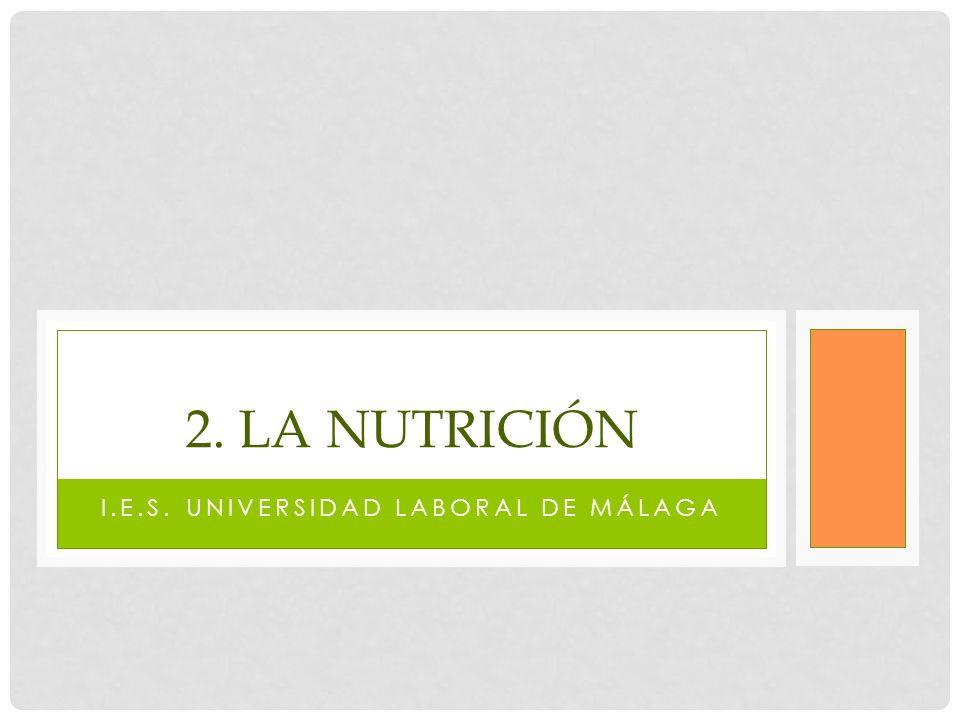 I.E.S. UNIVERSIDAD LABORAL DE MÁLAGA 2. LA NUTRICIÓN