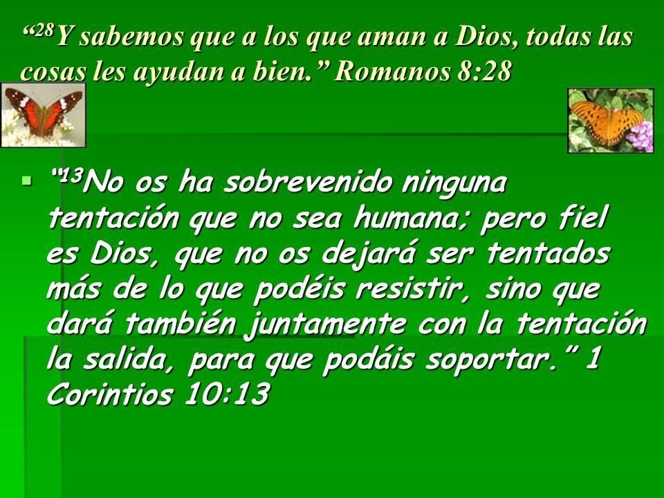 28 Y sabemos que a los que aman a Dios, todas las cosas les ayudan a bien.