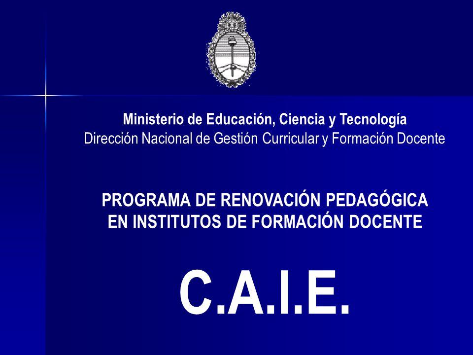 Ministerio de Educación, Ciencia y Tecnología Dirección Nacional de Gestión Curricular y Formación Docente PROGRAMA DE RENOVACIÓN PEDAGÓGICA EN INSTIT