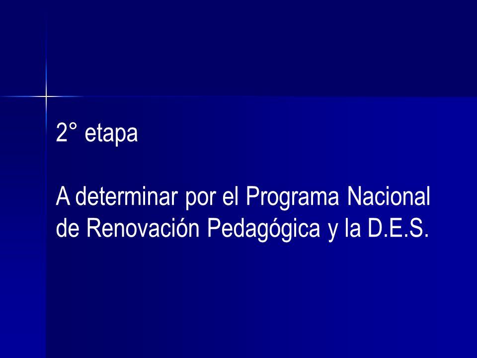 2° etapa A determinar por el Programa Nacional de Renovación Pedagógica y la D.E.S.