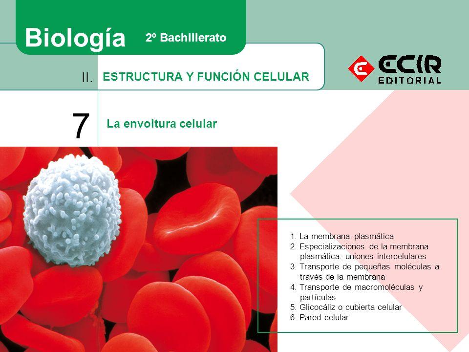 ESTRUCTURA Y FUNCIÓN CELULAR II. 7 La envoltura celular Biología 2º Bachillerato 1. La membrana plasmática 2. Especializaciones de la membrana plasmát
