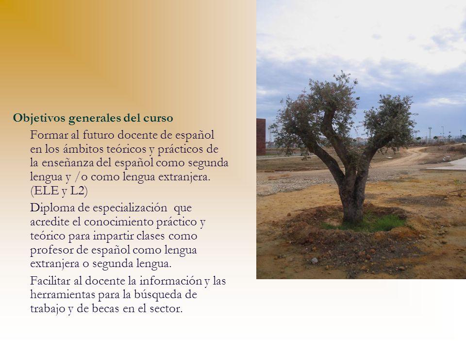 Objetivos generales del curso Formar al futuro docente de español en los ámbitos teóricos y prácticos de la enseñanza del español como segunda lengua