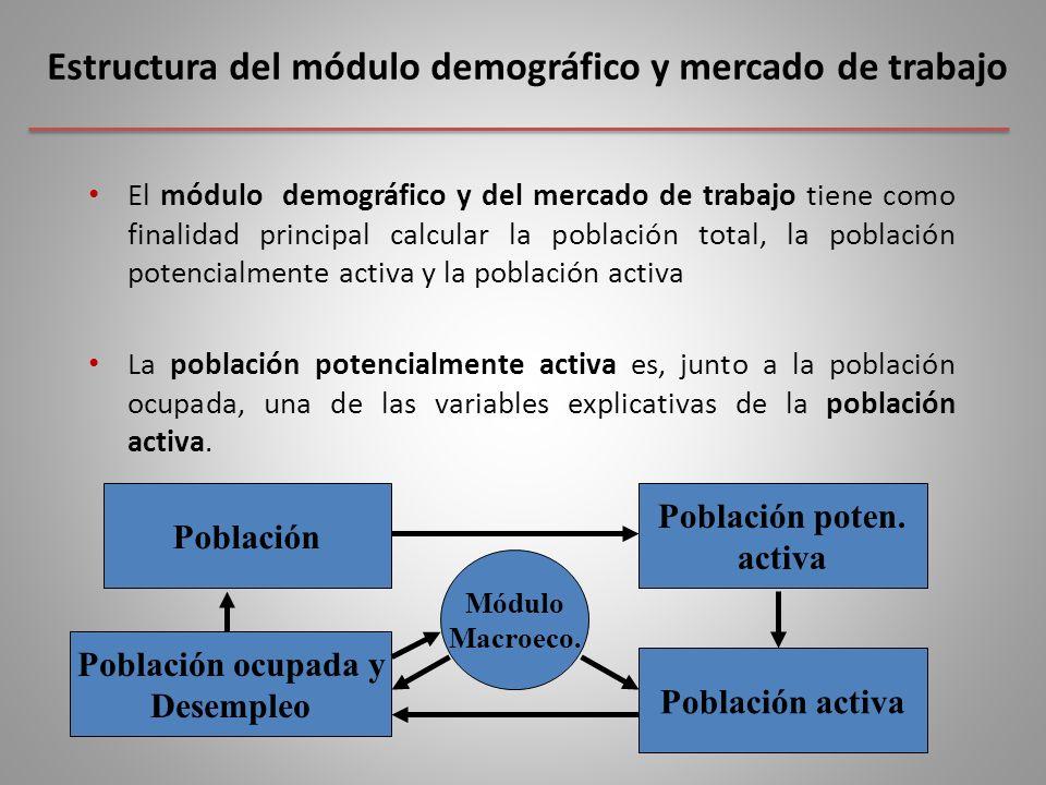Estructura del módulo demográfico y mercado de trabajo El módulo demográfico y del mercado de trabajo tiene como finalidad principal calcular la población total, la población potencialmente activa y la población activa La población potencialmente activa es, junto a la población ocupada, una de las variables explicativas de la población activa.