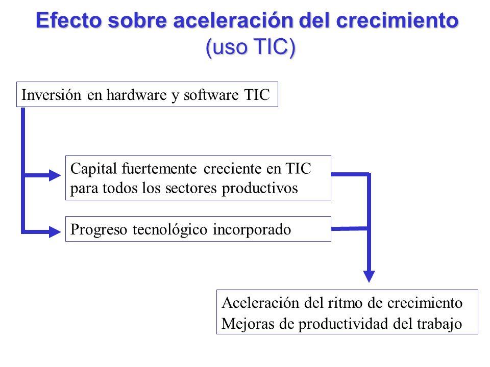 Efecto sobre aceleración del crecimiento (uso TIC) (uso TIC) Inversión en hardware y software TIC Capital fuertemente creciente en TIC para todos los sectores productivos Progreso tecnológico incorporado Aceleración del ritmo de crecimiento Mejoras de productividad del trabajo