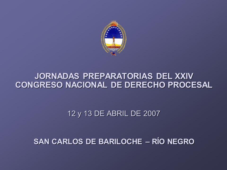 JORNADAS PREPARATORIAS DEL XXIV CONGRESO NACIONAL DE DERECHO PROCESAL 12 y 13 DE ABRIL DE 2007 12 y 13 DE ABRIL DE 2007 SAN CARLOS DE BARILOCHE – RÍO NEGRO
