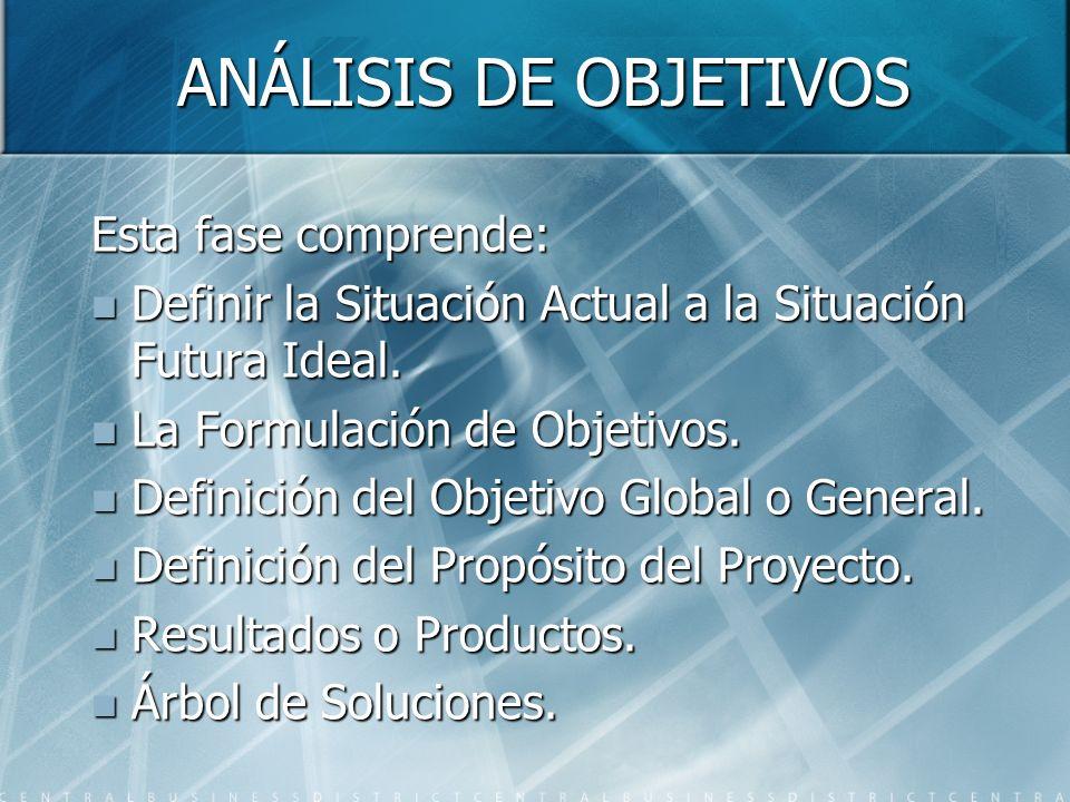 ANÁLISIS DE OBJETIVOS Esta fase comprende: Definir la Situación Actual a la Situación Futura Ideal. Definir la Situación Actual a la Situación Futura