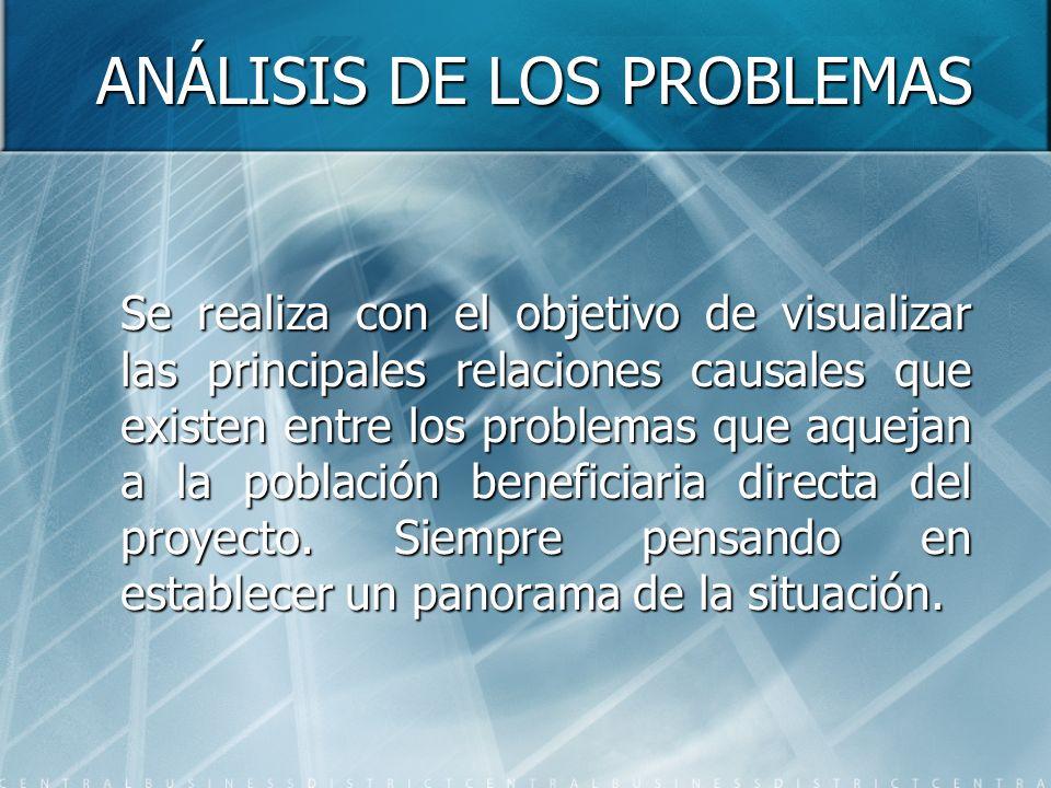 ANÁLISIS DE LOS PROBLEMAS Se realiza con el objetivo de visualizar las principales relaciones causales que existen entre los problemas que aquejan a l