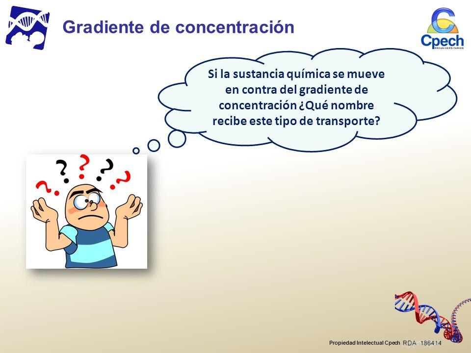 Propiedad Intelectual Cpech Gradiente de concentración Si la sustancia química se mueve en contra del gradiente de concentración ¿Qué nombre recibe este tipo de transporte?
